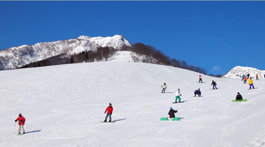 赤倉温泉スキー場 ヨーデル