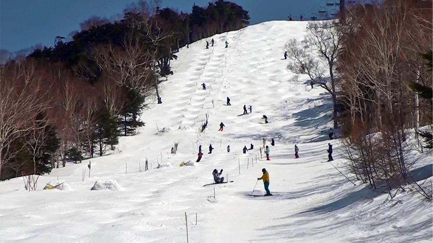 川場スキー場 コース