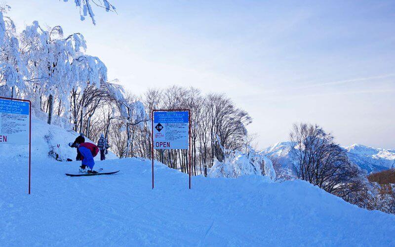 斑尾高原スキー場 パウダーライン