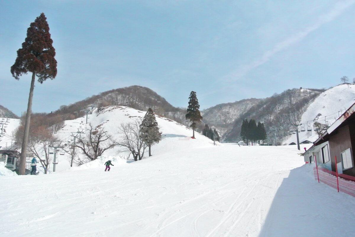 伊吹 スキー 場 奥