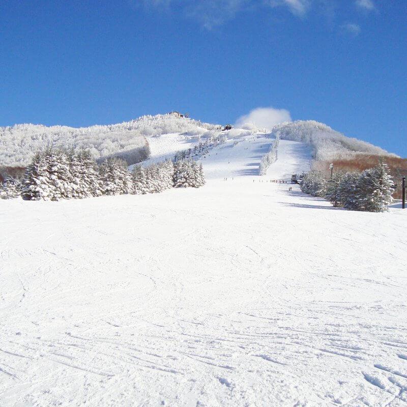 志賀高原スキー場 高天ヶ原
