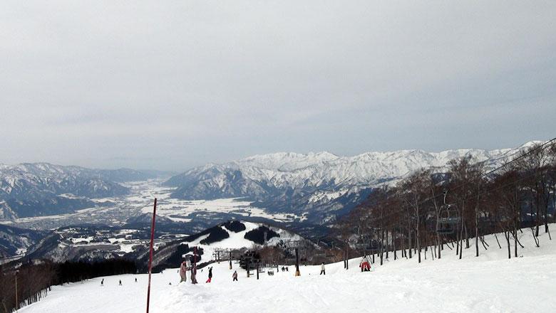 スキージャム勝山 コース