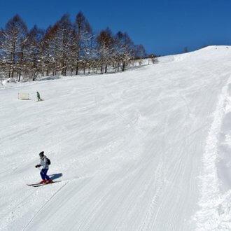 新潟 妙高杉ノ原スキー場
